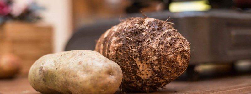 Η γιορτή της παλαιοχωρινής πατάτας και το κυπριακό κολοκάσι συγκεντρώνει μεγάλο κυπριακό ενδιαφέρον!