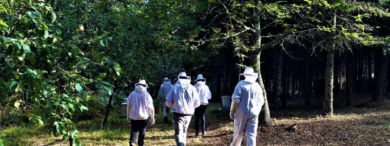 Πολωνοί & Γερμανοί trekking specialists μετατρέπονται σε Έλληνες μελισσοκόμους!