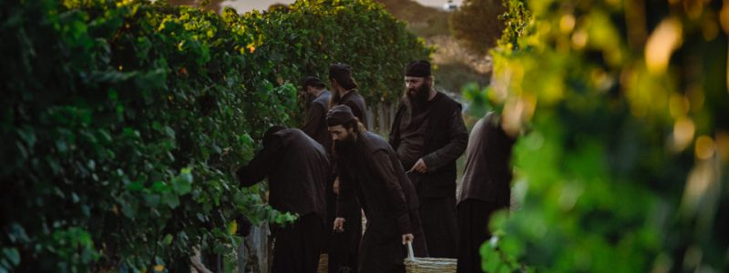 Traditional viticulture and winemaking of Eastern Halkidiki